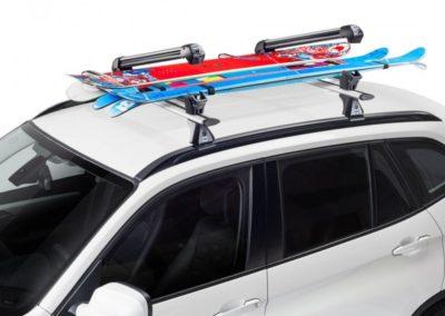 Ski Rack 6 Cruz